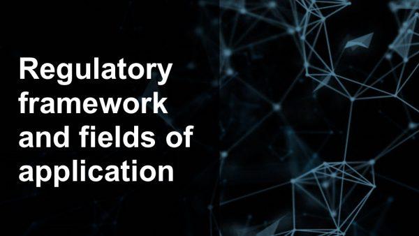 Affidaty - Regulatory framework and fields of application